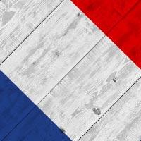 Bandiere in prima Francia